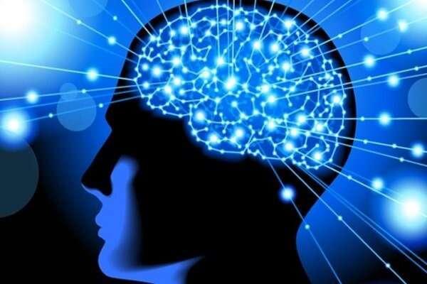 تاثیر ثرما بر عملکرد مغز انسان